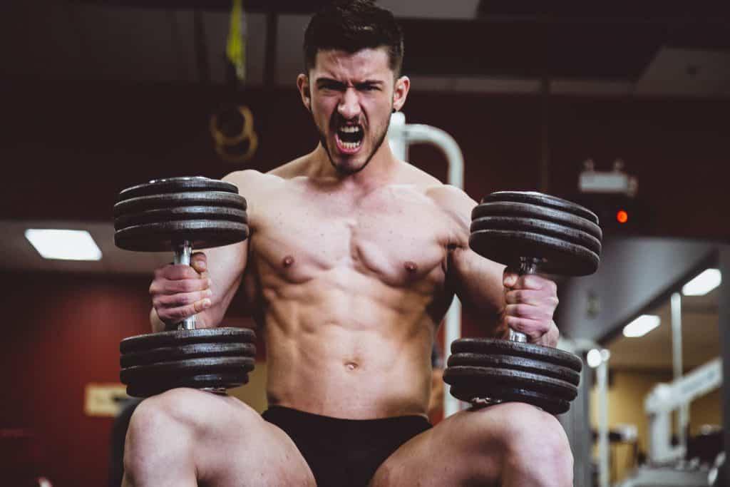 Les différents types de programmes de musculation