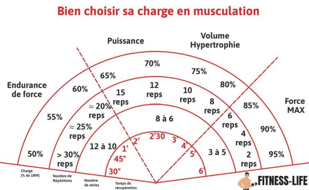 Charge de travail musculation