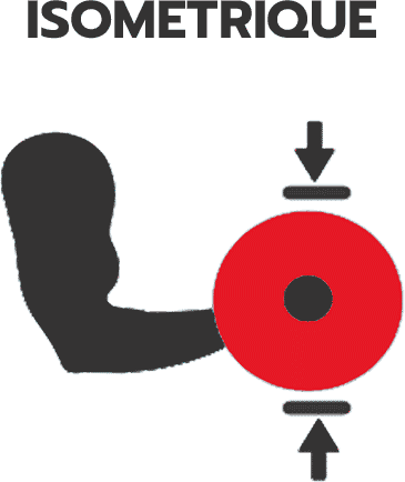 La contraction isometrique en musculation