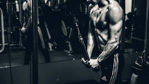 La contraction musculaire excentrique