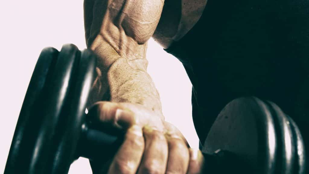 contraction musculaire isometrique