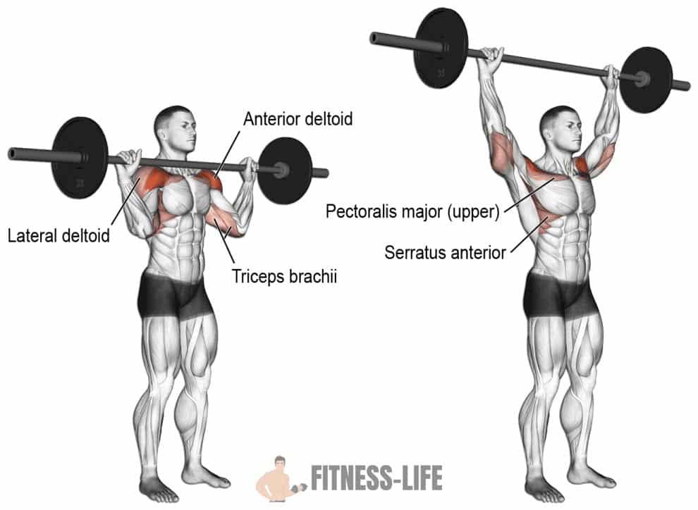 Mouvement developpe militaire exercice de musculation